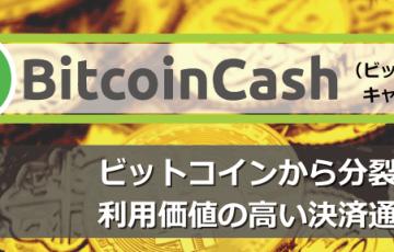仮想通貨ビットコインキャッシュ(BCH)┃仕組みと特徴を解説