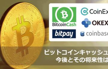 ビットコインキャッシュ(BCH)の将来性┃今後の動きはどうなる?